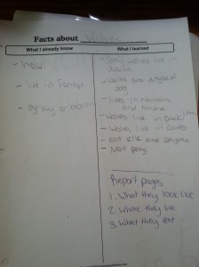 Josiah's facts about wolves.
