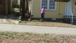 Josiah helping the neighbor pick weeds.